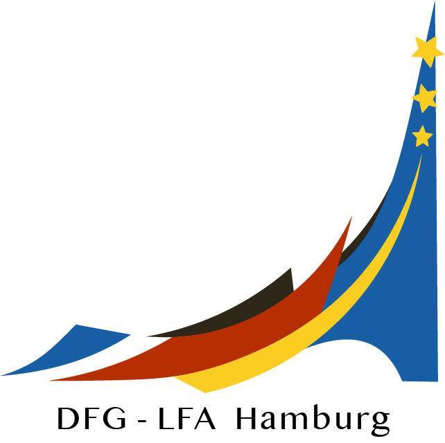 Logo dfg 4